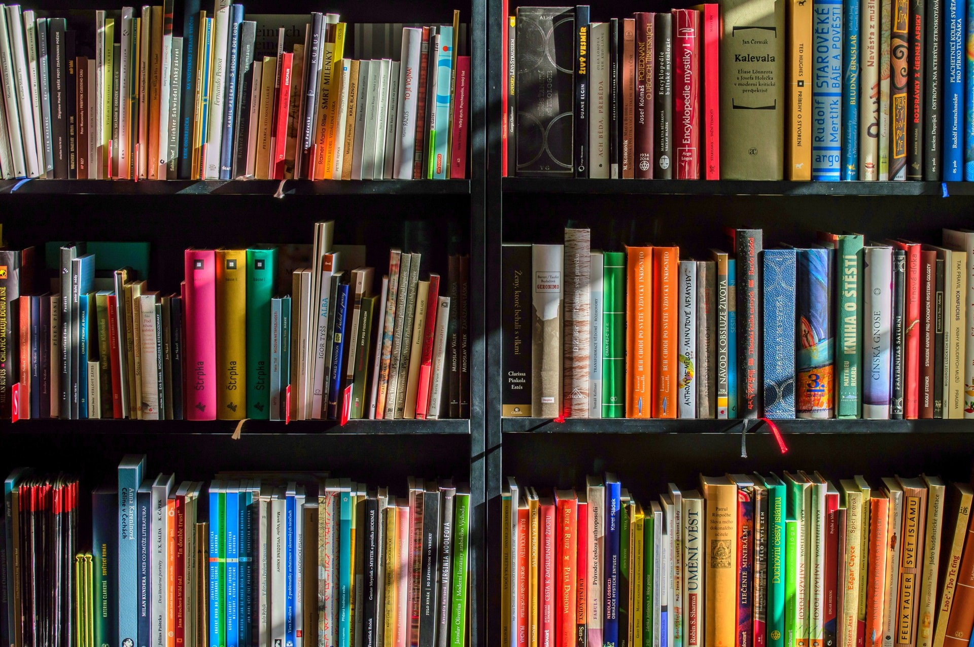 Library bookshelf filled with colorful books