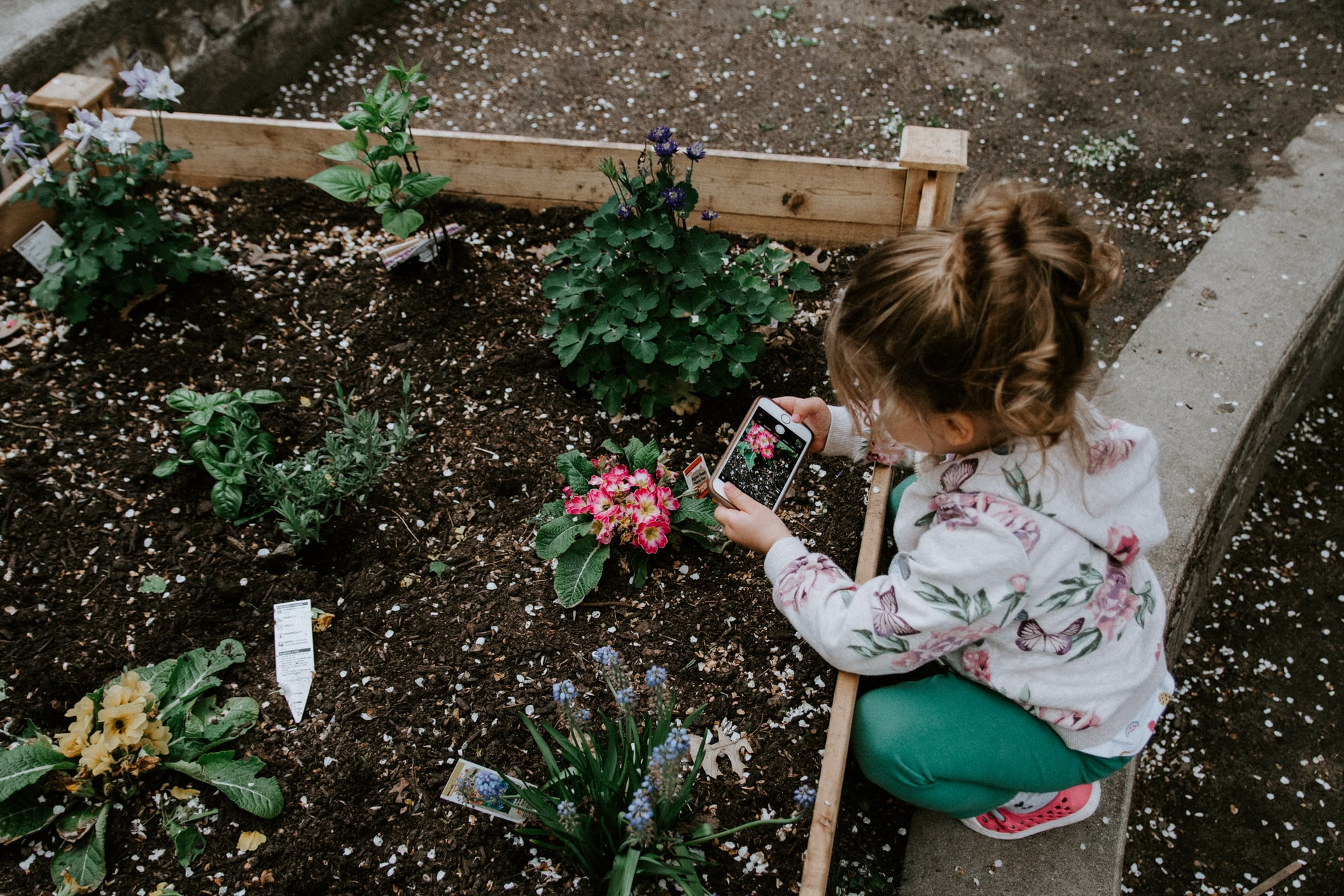 A young girl works in a garden filled with flowers.
