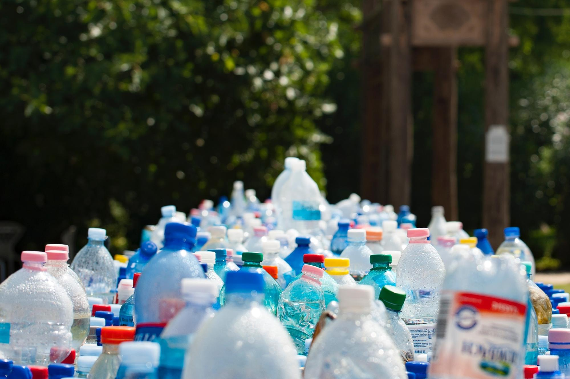 Plastic bottles are lined up and ready to go in the recycling bin.